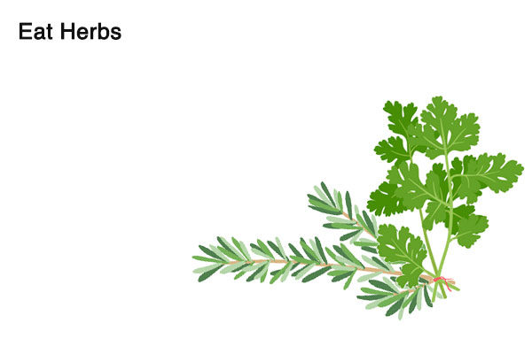 herbs for alcohol smell